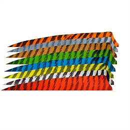 Shield 5 inch Feather (Specialty Colour 10 Pack)