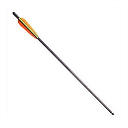 "20"" Carbon Crossbow Bolt"